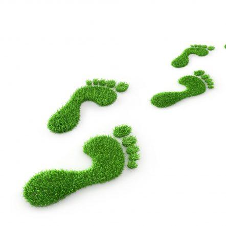 Grüne Fußspur